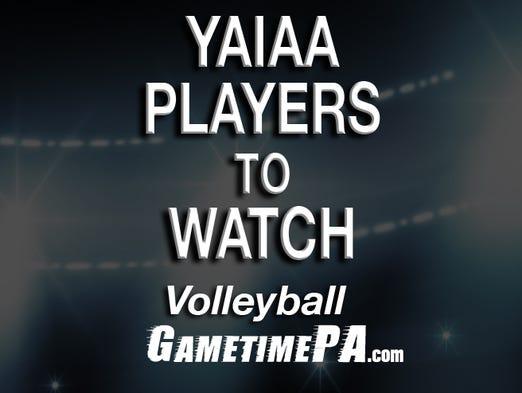 YAIAA volleyball players to watch.