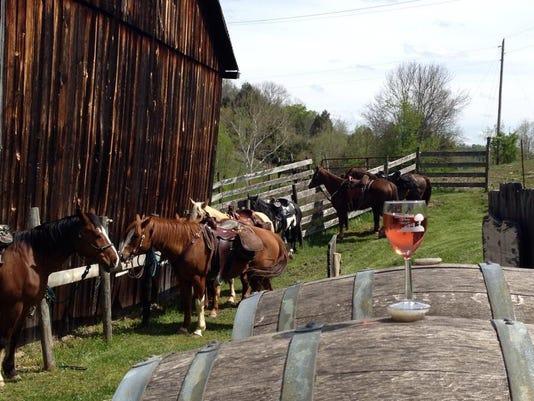 HorseParking