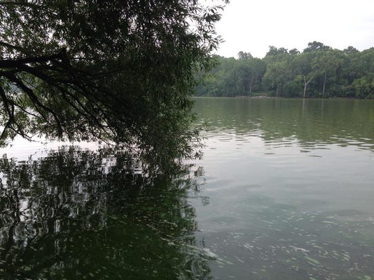 River 1.jpg