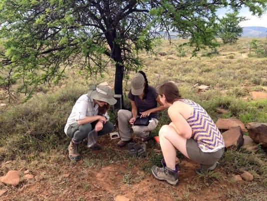 Students checking trail cameras in Mt. Zebra National Park.jpg