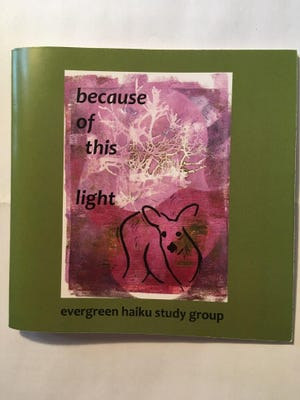"""""""because of this light"""""""