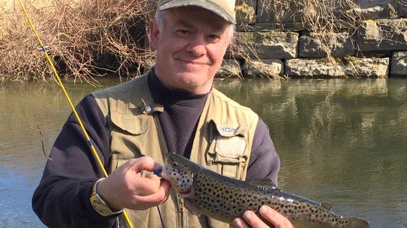 Another sleek brown trout from the Conhocton River.