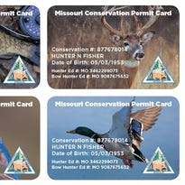 MDC offers new permit card for hunters, anglers and trappers