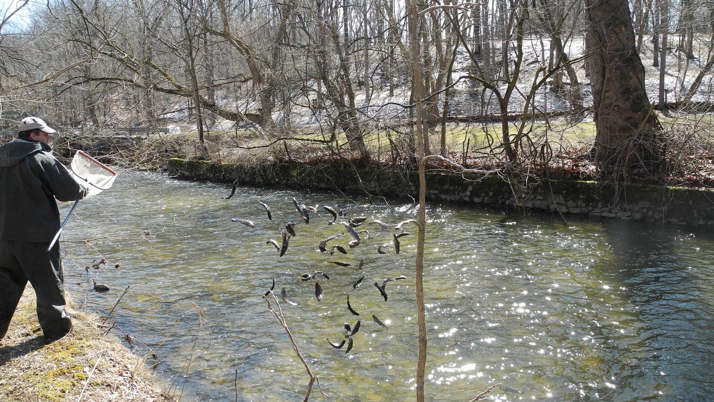 Fishing trout season opens april 9 for Trout fishing nj