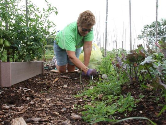 A woman works in the community garden at the community garden at Duke Farms in Hillsborough. ASBURY PARK PRESS FILE PHOTO