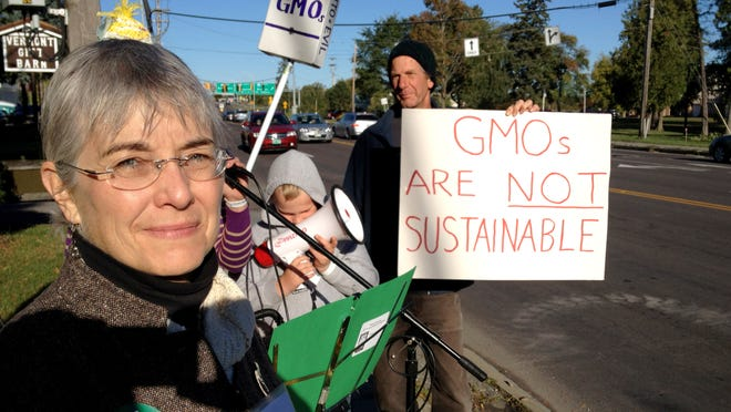 Andrea Stander, executive director of Rural Vermont, helped organize a protest Thursday Sept. 20, 2012 in front of the DoubleTree Hotel on Williston Road, prompted by the appearance of a Monsanto vice president at the annual conferences of the Vermont Feed Dealers and Manufacturers Association and the Vermont Dairy Industry Association. The nonprofit organization objects to Monsanto's genetic manipulation of seed for corn, soybeans, canola and other crops to make them resistant to insects, among other traits.