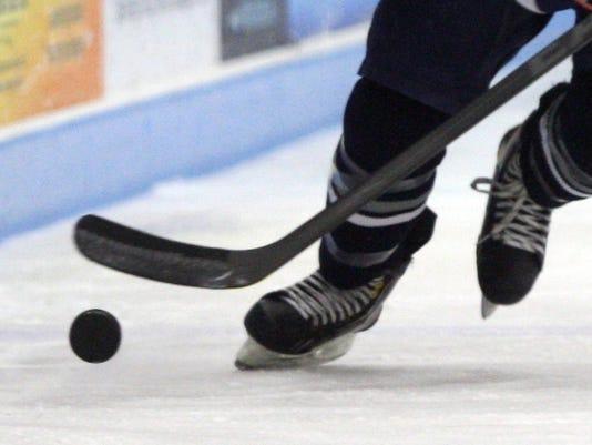 -webartsportsicehockey3.jpg_20140509.jpg