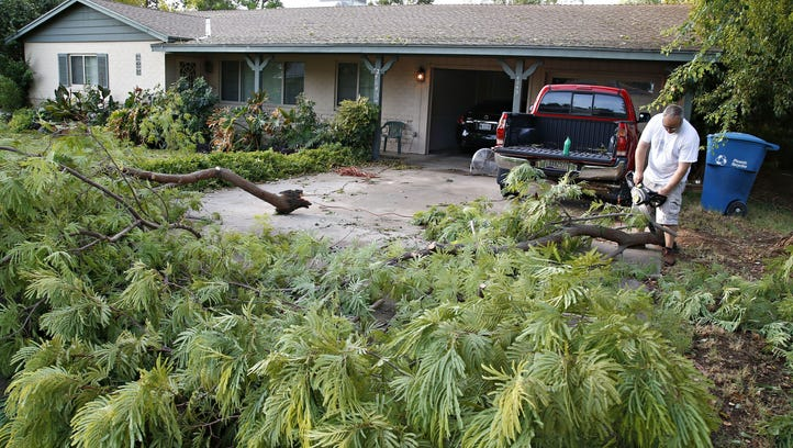 Tony Caldwell clears tree limbs from his east Phoenix