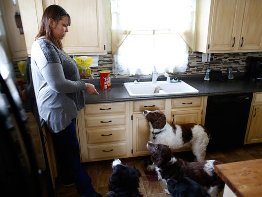 Deb Zuhse-Green tosses treats to dogs she and her husband