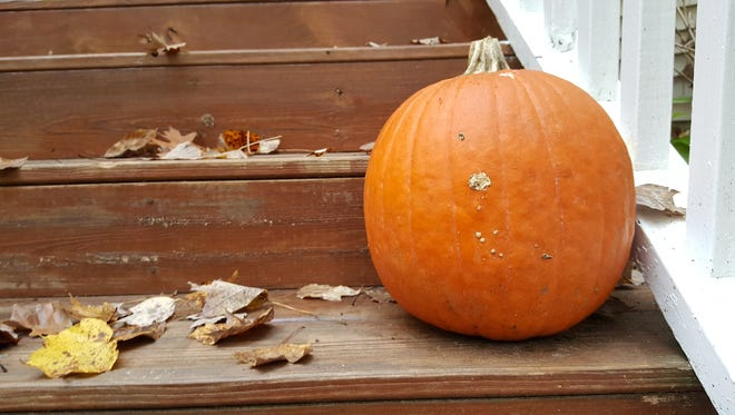 A pumpkin sits on a porch in Ocean Pines.