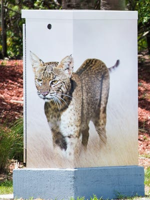 This utility box is at the intersection of Crosstown Parkway and California Boulevard.