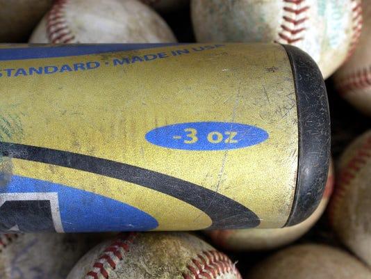 generic baseball bat.jpg