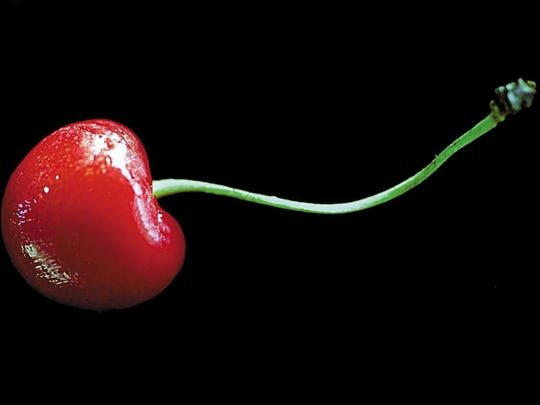 Cherries are among the first fruit trees to ripen.