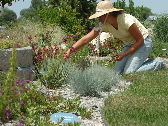 Rachel Waite weeds flower beds in the Ornamental Plant Display at the gardens at the Northern Colorado Water Conservation District near Berthoud in this file photo.