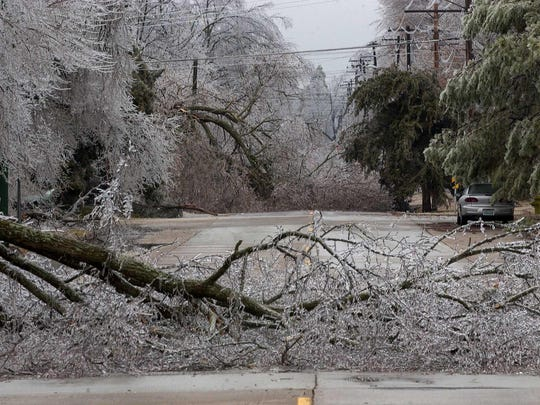 Trees were down all around the area including this part of Cherokee Street near National Avenue during the 2007 ice storm in Springfield.
