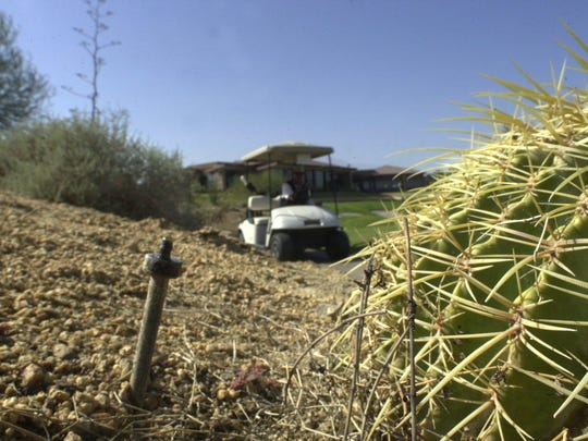 A drip sprinkler feeds water to a barrel cactus at the Desert Willow golf course.