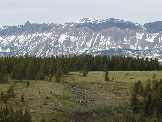 Riders cross the Hall Creek Valley in the Badger-Two Medicine area of north central Montana. The Blackfeet Nation is proposing federal protections for the 160,000-acre wilderness on the east slopes of the Rocky Mountains