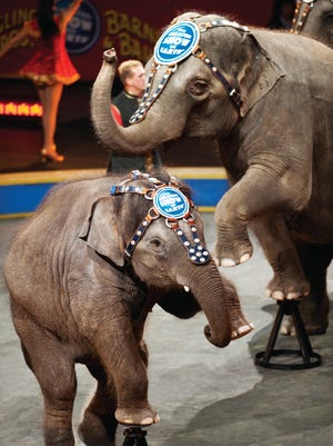 """The Ringling Bros. and Barnum & Bailey presents the """"Built to Amaze! - Nuts & Boltz Edition"""" this weekend at Germain Arena in Estero."""