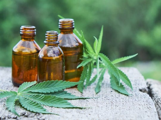 Bottles of hemp oil and hemp leaves sitting on a stone surface.