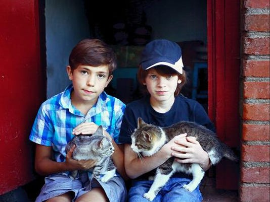 boys and cats