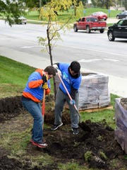 Students Caleb Hamby, left, and Anthony Luvan plant trees on Oct. 12, 2017, at Stewart Square Park in Des Moines.