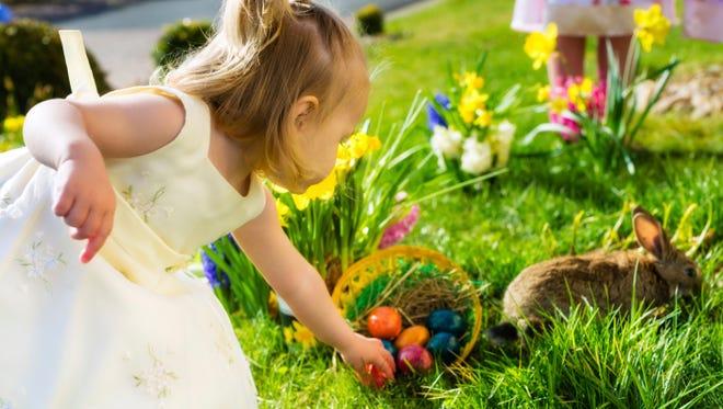 Children on Easter egg hunt with bunny.