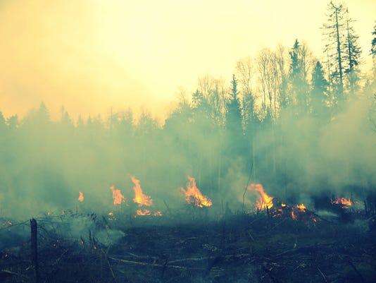 wildfire 010