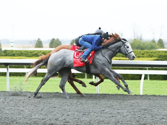 2014-04-09 coastline blue grass stakes