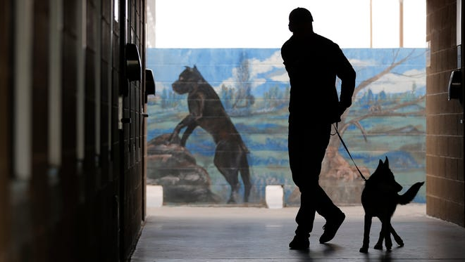 Mark Klein walks his dog, Dakota, around the El Paso Animal Services shelter on Tuesday as he looks for a new dog to adopt. The facility is trying to become a no-kill shelter and received funding approval from the City Council to help it work toward the goal.