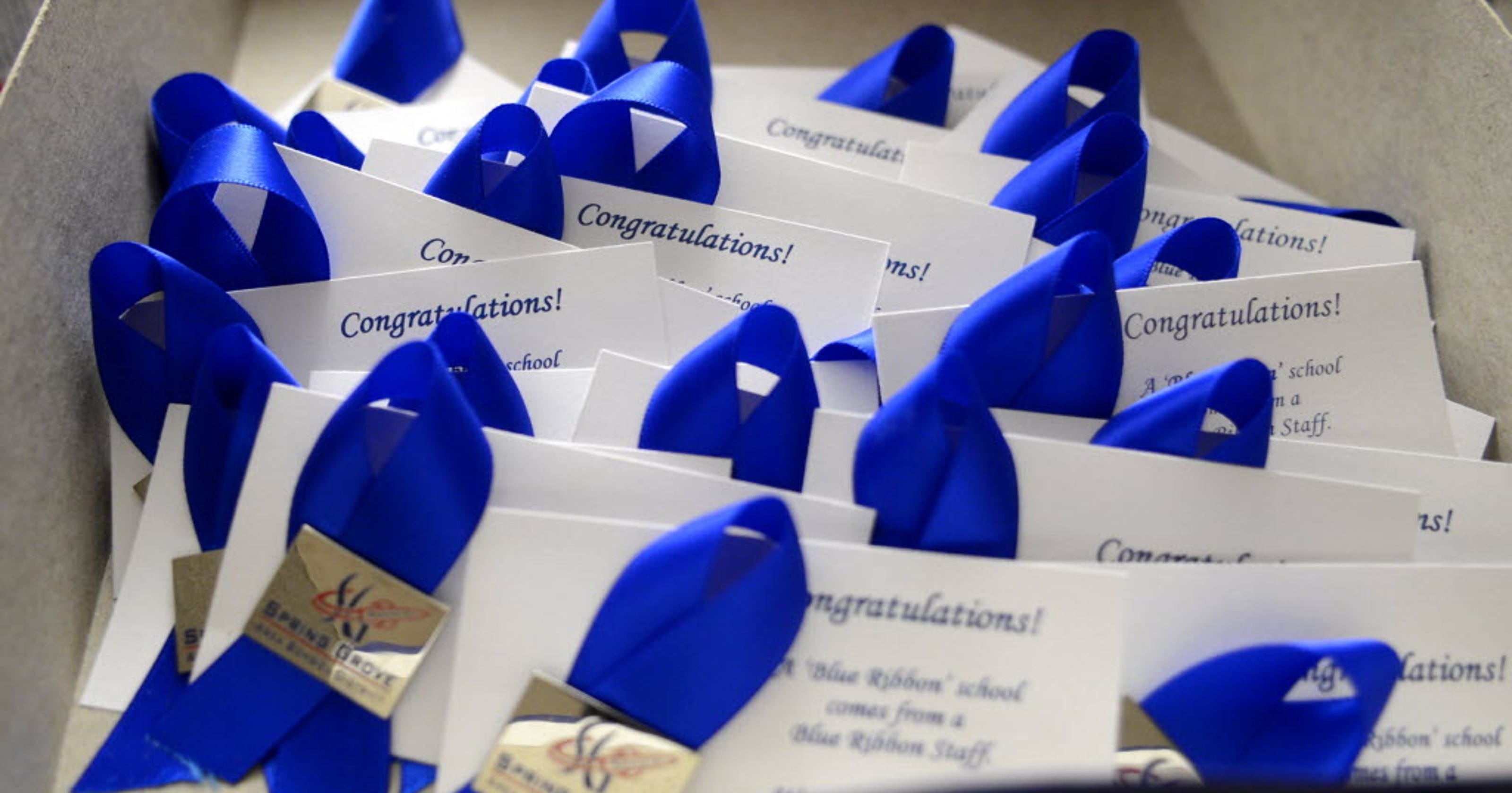 Help celebrate Paradise Elementary School's Blue Ribbon win