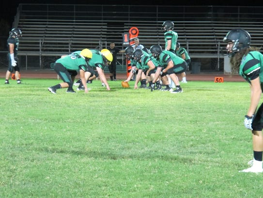 The Virgin Valley Bulldogs will feature a plethora