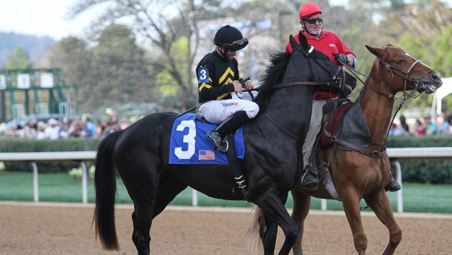 Sonneteer #3 and jockey Richard Eramia in the post parade before finishing second in the Rebel Stakes (Gr.2) at Oaklawn Park on March 18, 2017 in Hot Springs, AR.