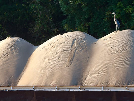 A heron sits atop a pile of sand waiting to be delivered by barge on the Cumberland River near Nashville