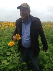 Jim Durr devotes half his 1,800-acre farm in Burlington County to sunflowers.
