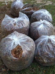 It's a waste to bag up yard debris when it could be used as mulch.