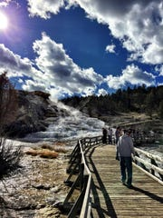 Fall in Yellowstone 2