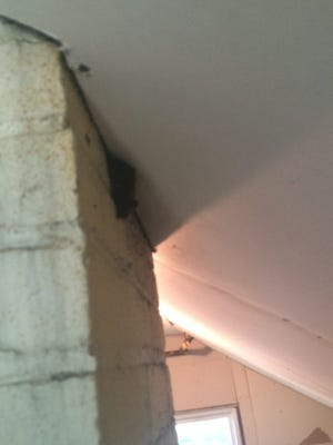 A bat sleeps at the intersection of the chimney and ceiling in an Ames home.