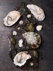 Bayshore Center at Bivalve hosts Second Friday by the