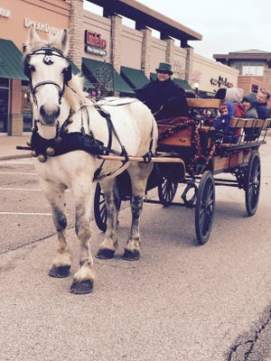 Free horse-drawn wagon rides will be offered at the annual Anderson Township tree lighting Saturday, Dec. 2.