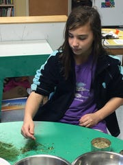Logan Claffy of Shelburne makes herbal tea as part of the solstice celebration at The Schoolhouse.