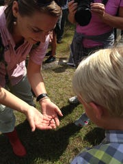 Jessi Drummond, environmental education specialist for CREW Land & Water Trust, shows a baby ring-neck snake to a visitor during a hike.