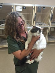 Animal care worker Lena Cooper comforts a recently rescued stray cat at the Visalia Animal Care Center.