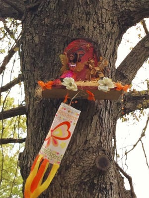 Fairies can be spotted in the trees during Hayes Arboretum's Fairies in the Forest program through May 21.