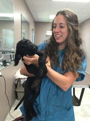 Staff member Autumn Mortenson holds a puppy day care client at Precious Pets Grooming Salon & Doggie Daycare.