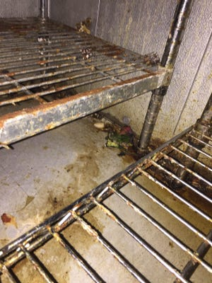 Photos taken during a Tuesday restaurant inspection at Harbor City, which was shuttered after 19 critical violations were uncovered.