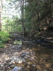 Raccoon Creek in Jackson County, part of a Nature Conservancy