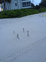 More than 150 sea turtle nests were found flooded along Collier County beaches Wednesday.