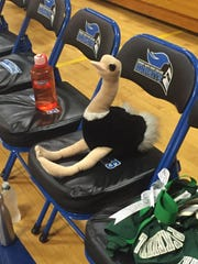 Penelope, the Spackenkill High School volleyball team's good luck charm.