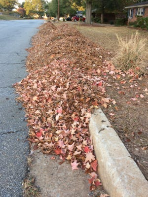 "A windrow of leaves looks like ""yard waste,"" but it can be an excellent mulch or soil amendment when converted to ""black gold"" by composting."