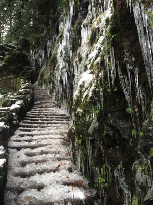 The icicles at Silver Falls State Park.